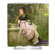 The Princess And The Frog Shower Curtain