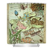 The Princess And The Frogs Shower Curtain