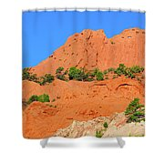 The Profile Of An Aborigine Celebrity  Shower Curtain
