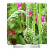The Promise Of April Showers Shower Curtain