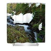 The Promise Of Things Shower Curtain