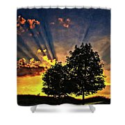 The Promise Oil Shower Curtain