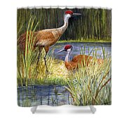 The Protector - Sandhill Cranes Shower Curtain
