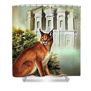 The Protector Of The City Of Petra Shower Curtain