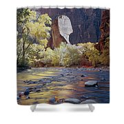 312447-the Pulpit  Shower Curtain