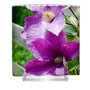 The Purple Flowers Shower Curtain
