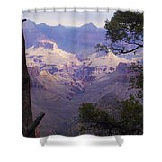 The Purple Grand Shower Curtain