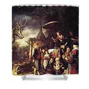 The Quack 1652 Shower Curtain