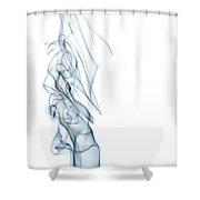 The Queen Shower Curtain