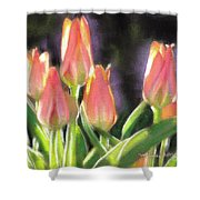 The Queen's Tulips Shower Curtain