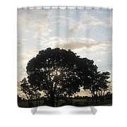 The Storm Has Passed Shower Curtain