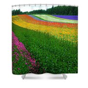 The Rainbow Of Flower At Hokkaido Shower Curtain