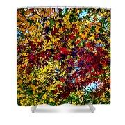 The Rainbow Tree Shower Curtain