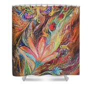 The Rainbow's Daughter Shower Curtain