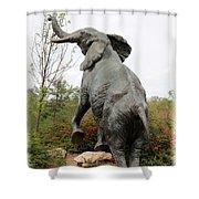 The Reach Shower Curtain