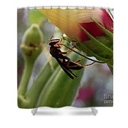 The Real Gardener 2 Shower Curtain