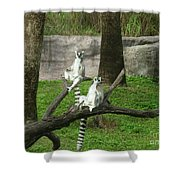 The Real King Julian Shower Curtain