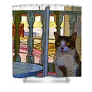 The Rear Window Shower Curtain