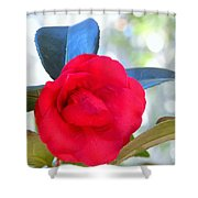 The Red Camellia Shower Curtain