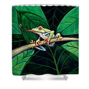The Red Eyed Tree Frog Shower Curtain