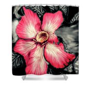 The Red Flower Shower Curtain by Darren Cannell