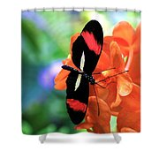 The Red Postman 1 Shower Curtain