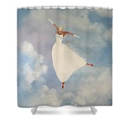 The Red Shoes Shower Curtain
