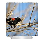 The Red Wing Shower Curtain
