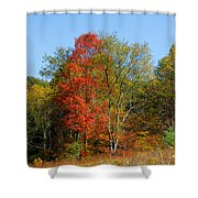 The Reds And Greens Of Autumn Shower Curtain
