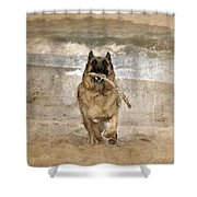 The Retrieve Shower Curtain by Angie Tirado