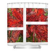 The Rhody 01 Shower Curtain