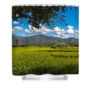 The Rice Fields Of Pai, Thailnad Shower Curtain