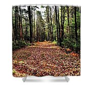 The Richness Of Autumn Treasures Shower Curtain