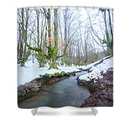 The River In The Otzarreta Forest With Snow Shower Curtain