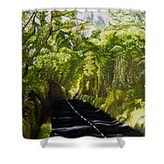 The Road Through Glenastar Shower Curtain