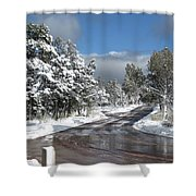 The Road Through Winter Shower Curtain