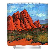 The Road To Babylon Shower Curtain