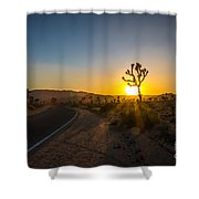The Road To Joshua Tree At Sunset Shower Curtain