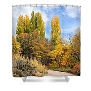 The Road To Josie's Cabin Shower Curtain