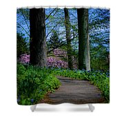 The Road To Peace And Quiet Shower Curtain