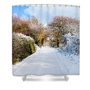 The Road To Restronguet Shower Curtain