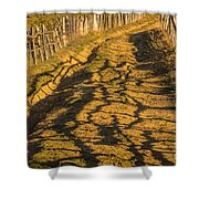 The Road To The Pasture Shower Curtain