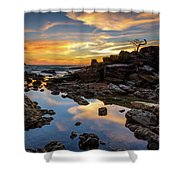 The Rock Bonsai During Sunset  Shower Curtain