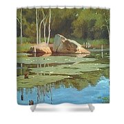The Rock Shower Curtain by Dianne Panarelli Miller