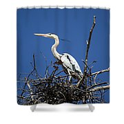 The Rookery Shower Curtain