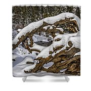 The Roots Of Winter Shower Curtain