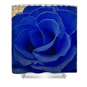 The Rose Of Sadness Shower Curtain by Jeff Kolker