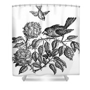 The Roses And The Sparrow Shower Curtain