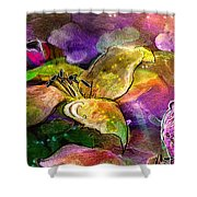 The Roses In The Sheep Dream Shower Curtain
