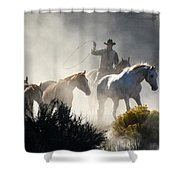 The Round Up Shower Curtain